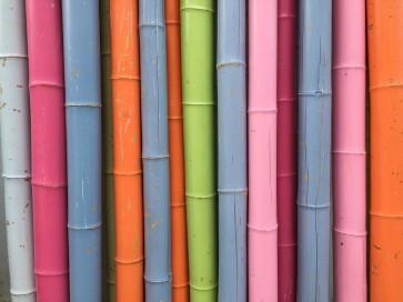 Bambusstangen pastell