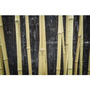Raumtrenner, Bambusstangen mit Metallbodenhalter